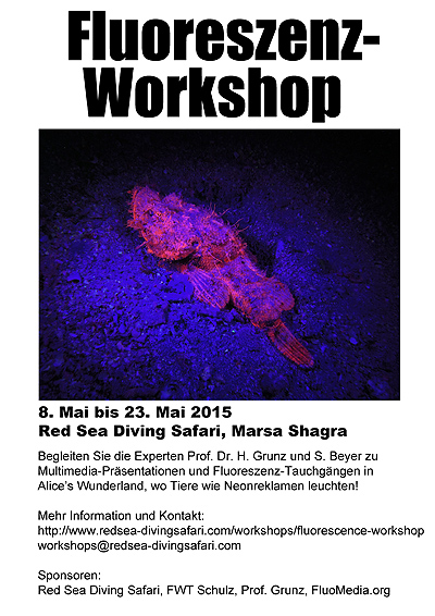 [Fluorescence Diving Workshop]